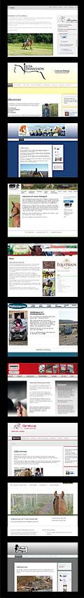 Karlsson Bild & Original websidor för kunder